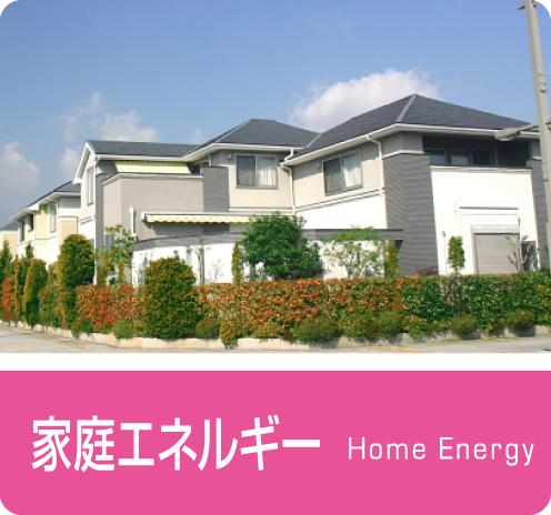 家庭エネルギー